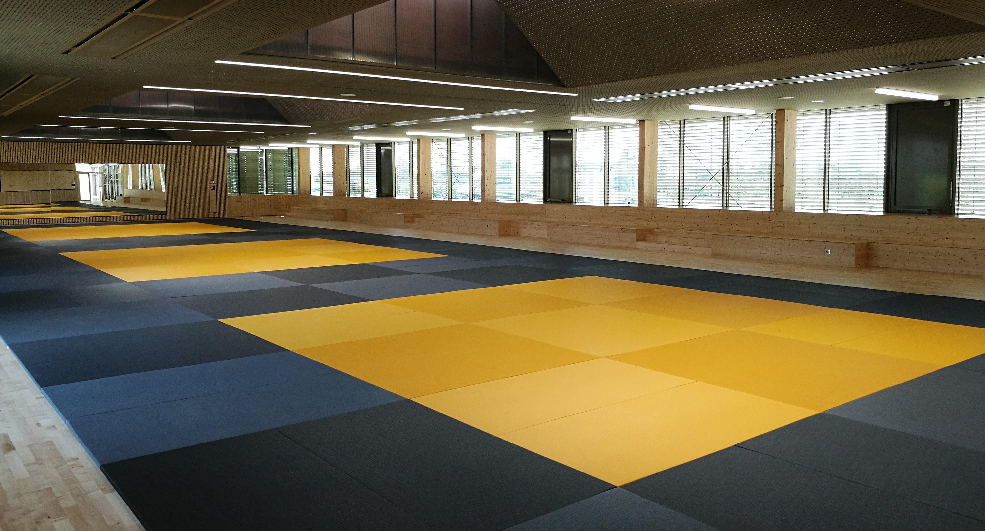 sport pole sportif arts martiaux wintzenheim e1564399810778